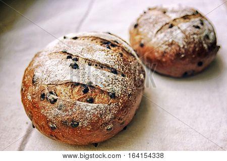 rustic Italian bread with raisin, selective focus