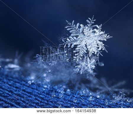 Beautiful snow flake ice crystal on blue woven wool