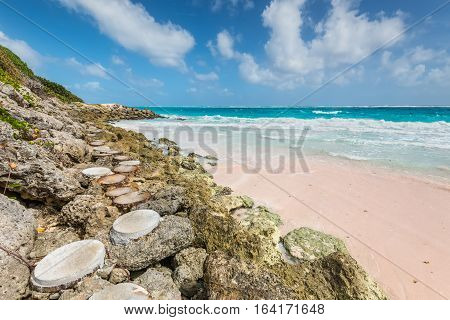 The path to the tropical beach on the Caribbean island - Crane Beach Barbados. The beach has been named as one of the ten best beaches in the world and it has the pink-tinged sands.
