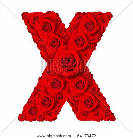 Rose alphabet set - Alphabet capital letter X made from red rose blossoms isolated on white background