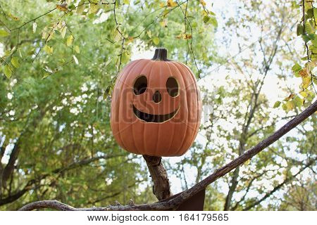 Pumpkin jackolantern with smile face hanging on top of stick in forest