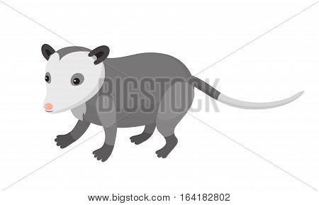 Cute cartoon opossum on isolated white background vector illustration
