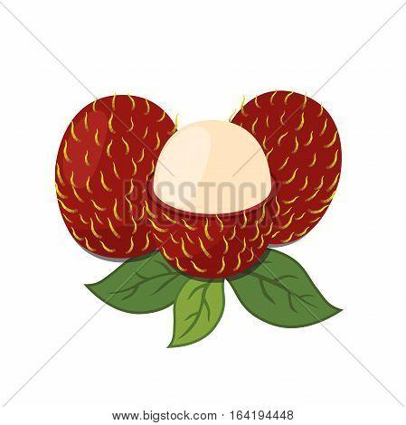 Rambutan tropical fruit. Exotic vitamin nutrition. Juicy ripe fruit in flat vector style. Natural organic rambutan.