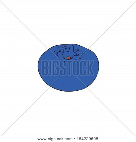 one whole blueberries on white background of vector illustrations