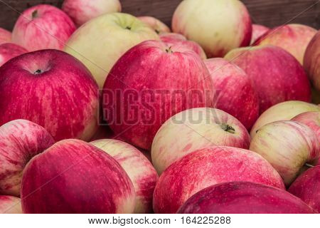background of many beautiful, juicy red and green apples
