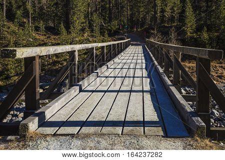 Wooden bridge on the River Ova de Roseg in Switzerland