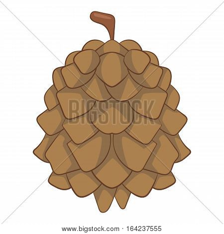 Pine cone icon. Cartoon illustration of pine cone vector icon for web design
