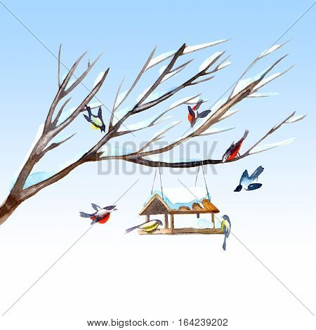 Postcard of a titmouse, bullfinch and feeder on the tree.Greeting card of a bird.Winter image.Watercolor hand drawn illustration.