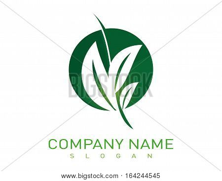 Landscaping logotype company on a withe background