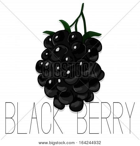Vector hand drawn watercolor painting blackberry on white background. Fashion illustration of forest berries. Sketch of summer fruit. Food organic logo. Sweet tasty dessert dark