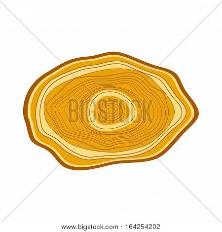 Wood slice texture tree circle cut raw material vector. Detail plant years history textured rough, forest. Circular growth industry environment illustration.