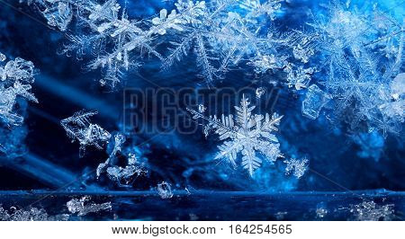 Elements of cold winter season frozen ice crystal snow flakes