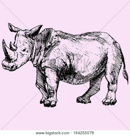 Rhinoceros doodle style sketch illustration hand drawn vector