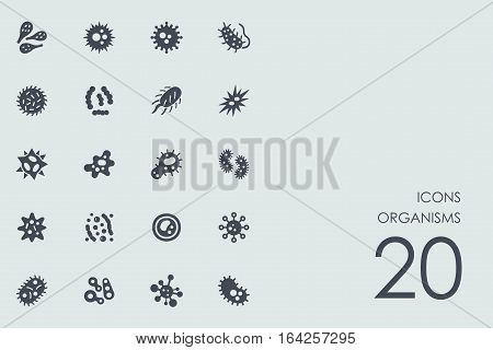 organisms vector set of modern simple icons