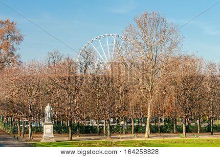 The famous public Tuileries Garden in winter. Paris. France.
