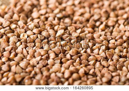 Buckwheat seeds background closeup photo. Healthy food