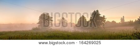 Summer Misty Dawn On The Bog. Foggy Swamp In The Morning. Panorama