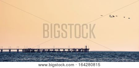 sunset landscape with sea pier and birds