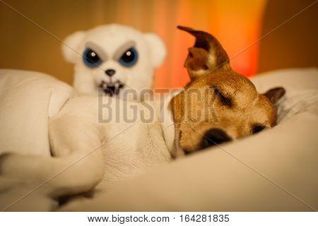 Dog Having A Nightmare Or Bad Dream