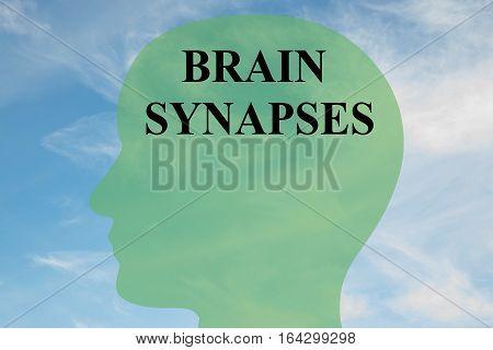 Brain Synapses Concept