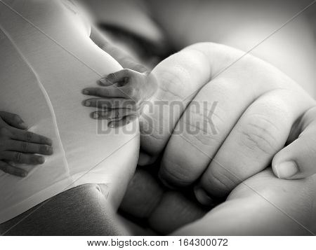 Pregnant Woman With Hands Over Tummy With Newborn Baby Hand Background. Concept Of Love And Family.