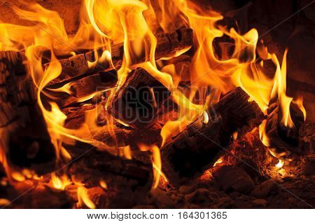 burning log and fire. closeup of Flame in a fireplace flames and burning woods