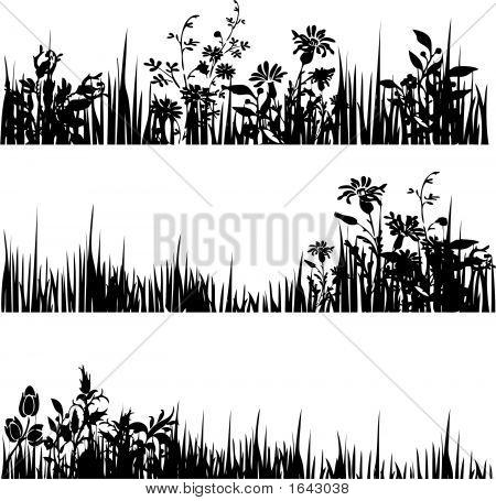 Foliagedivider.Eps