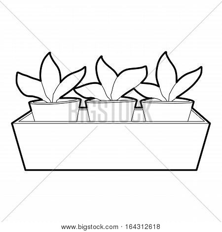 Young sprout seedlings in a flower box icon. Isometric 3d illustration of young sprout seedlings in a flower box vector icon for web