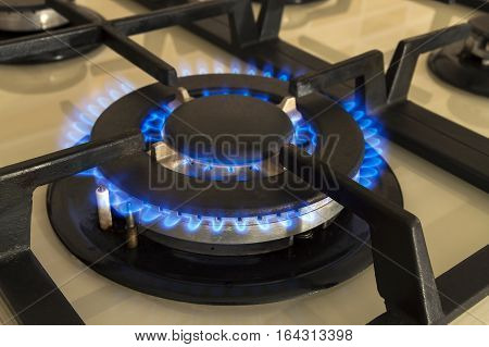 Closeup shot of blue fire from domestic kitchen stove. Gas cooker with burning flames propane gas.