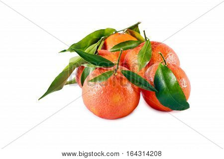 Clementines with green leaves over white background