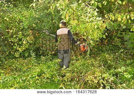verneuil sur Seine France - november 3 2016 : a pruner in agarden