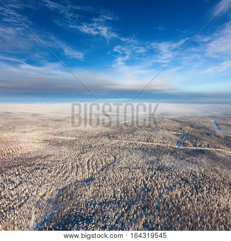 Aerial view of forest of plain during a winter day.