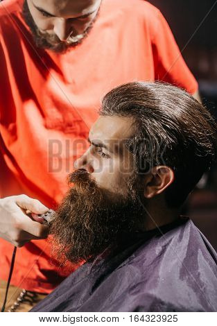 Handsome Bearded Man In Barbershop