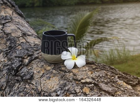 Glass of water with flowers Against the backdrop of the water