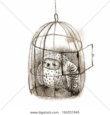 Great grey owl sleeping in a birdcage. Isolated on white. Original high resolution graphic artwork.