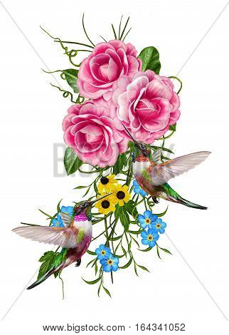 Flower composition. Isolated on white background. Small birds hummingbirds. Bouquet pink roses green leaves of camellia delicate flowers.