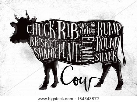 Poster beef cutting scheme lettering chuck brisket shank rib plate flank sirloin shortloin rump round shank in vintage style drawing on dirty paper background