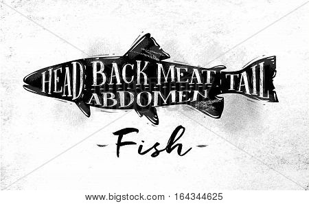 Poster fish cutting scheme lettering head back meat abdomen tail in vintage style drawing on dirty paper background