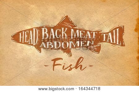 Poster fish cutting scheme lettering head back meat abdomen tail in retro style drawing on craft paper background