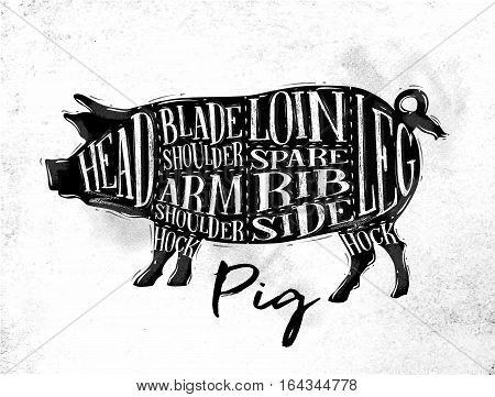 Poster pig pork cutting scheme lettering head blade shoulder arm shoulder loin spare rib side hock leg in vintage style drawing on dirty paper background