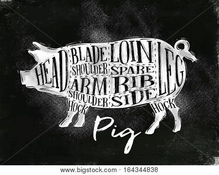 Poster pig pork cutting scheme lettering head blade shoulder arm shoulder loin spare rib side hock leg in vintage style drawing with chalk on chalkboard background