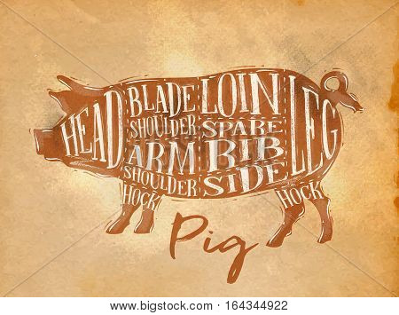 Poster pig pork cutting scheme lettering head blade shoulder arm shoulder loin spare rib side hock leg in retro style drawing on craft paper background
