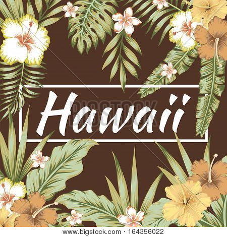 Trendy slogan Hawaii in the frame. The composition of tropical banana leaves flowers hibiscus and frangipani. Brown background