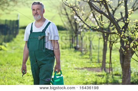 Portrait of a senior man gardening in his garden poster