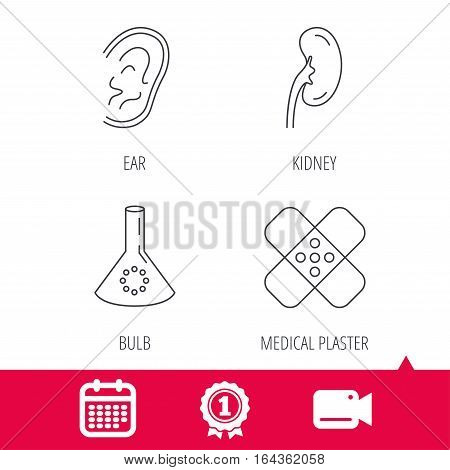 Achievement and video cam signs. Lab bulb, medical plaster and ear icons. Kidney linear sign. Calendar icon. Vector