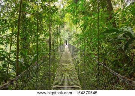 Hanging bridge at natural rainforest park in Costa Rica