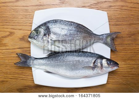 fresh raw fish sea bass and sea bream on a white plate on a wooden table