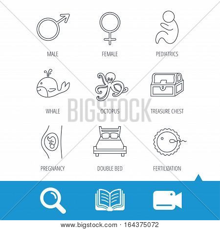 Fertilization, pregnancy and pediatrics icons. Baby child, whale and octopus linear signs. Treasure chest, double bed icons. Video cam, book and magnifier search icons. Vector