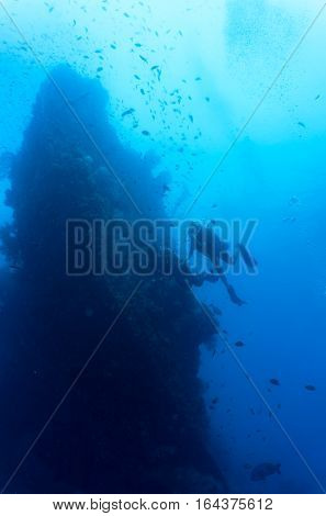 Divers swimming at a wreck in Bali Indonesia