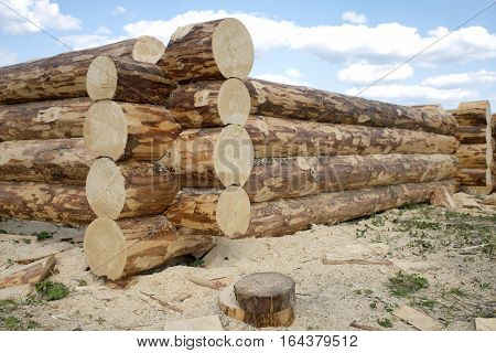 Construction of rural house from heavy logs against blue sky with clouds in summer day. Horizontal photo